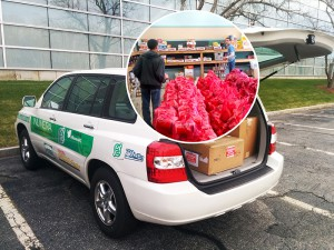 Hydrogen-Powered Holiday Drive